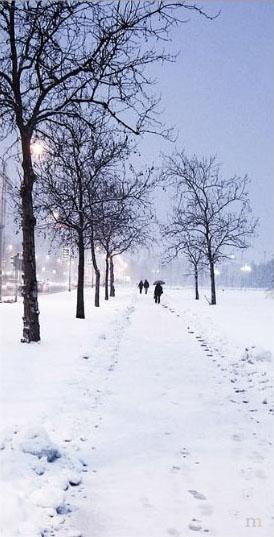 Snežni raj